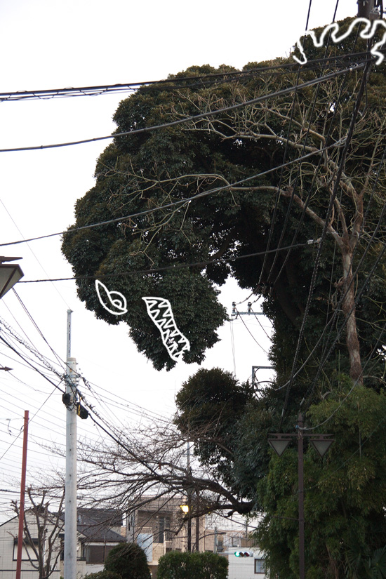 Godzilla_8985N_WEB.jpg