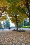 park_a02.jpg