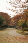 park_a12.jpg