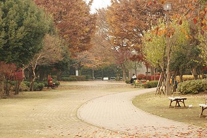 park_a14.jpg