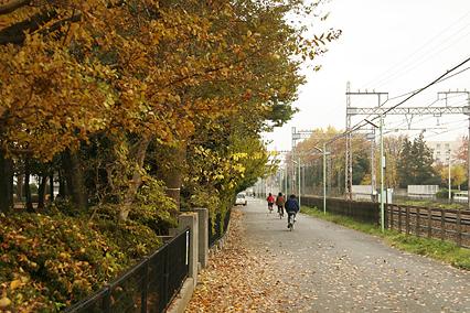 park_b02.jpg