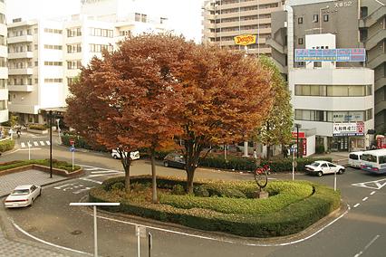 park_c05.jpg