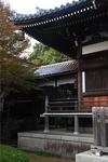 seityuji15.jpg