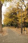 park_b03.jpg