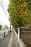 park_c04.jpg