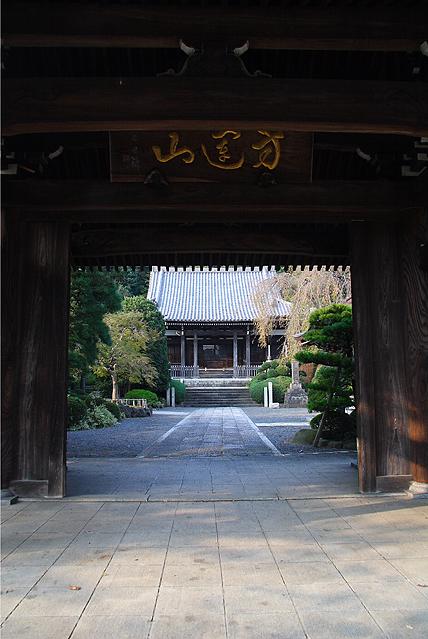 seityuji12.jpg